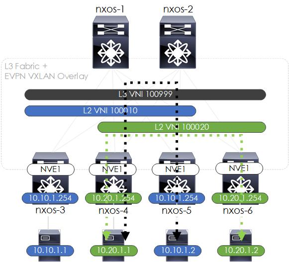 How to Build a NXOS-9000v Based EVPN VXLAN Fabric